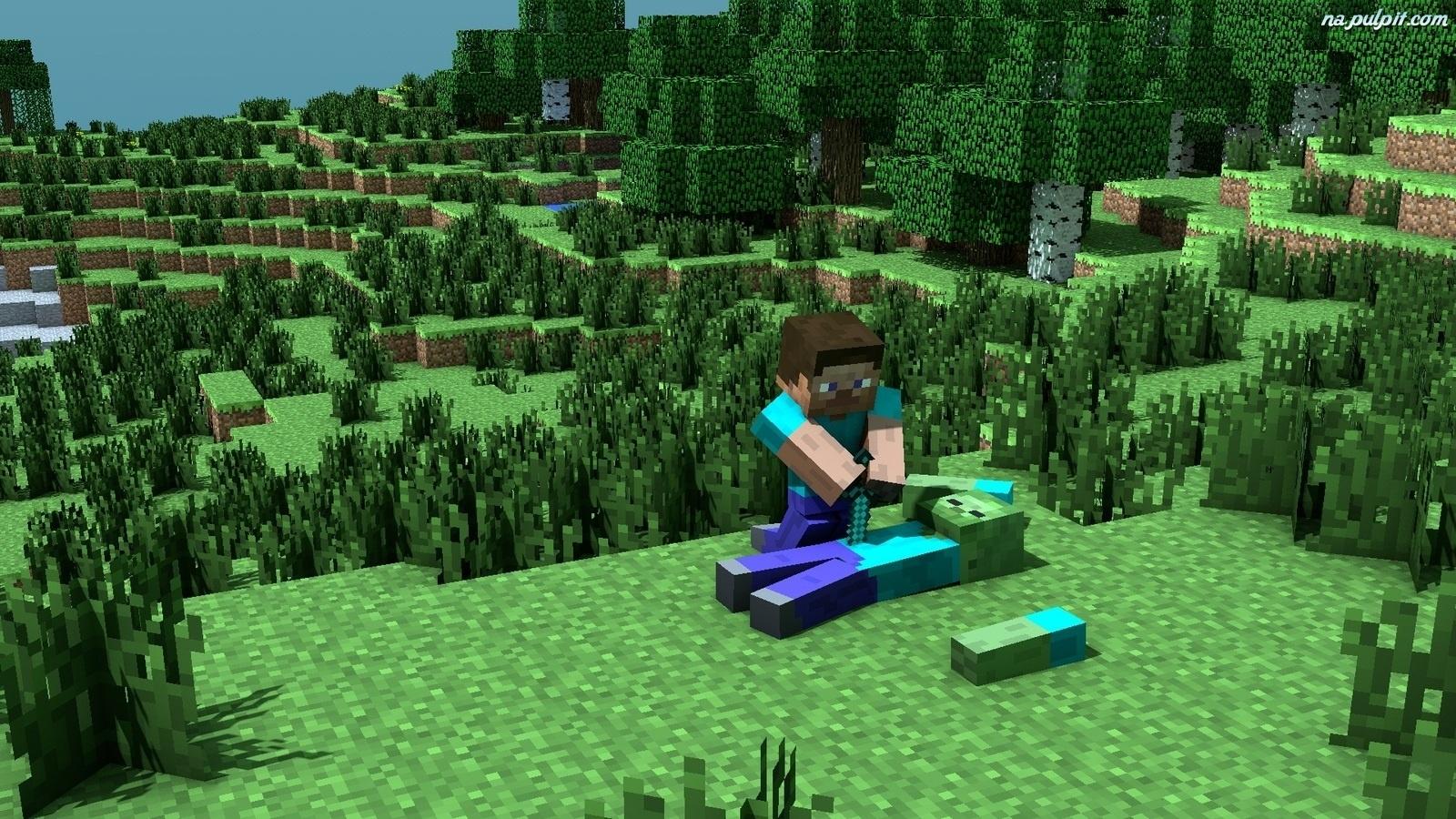 minecraft domek pobierz minecraft tapeta z gry despicable me the